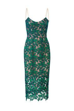 Dress The Population Green Lace Aurora Dress Rent Dresses, Plus Size Maxi Dresses, Casual Dresses, Fashion Dresses, Party Dresses, Boho Chic Wedding Dress, Boho Dress, Aurora Dress, Green Lace Dresses