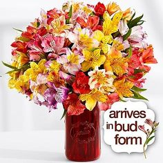 Your Neighborhood Florist  Theshopstation Online  Same Day Flower Delivery  Fresh Flowers  Wedding Flowers  Birthday Flowers >>> Click image for more details.