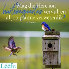 Psalm 20, Afrikaanse Quotes, God First, Bible Verses, Me Quotes, Beautiful Pictures, Spirituality, Christian, Bird