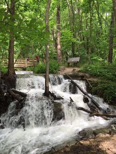 This nature sanctuary holds 3 miles of trails in its 115 acres of land. We recommend going with the short and easy Old Kate Trail to view the sanctuary's beautiful waterfall.