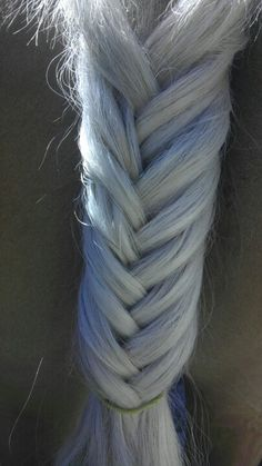Fish tail braid on a horses tail