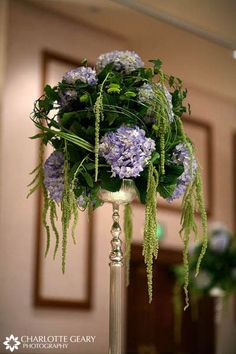 Lovely picture of a tall hydrangea centerpiece from Charlotte Geary.