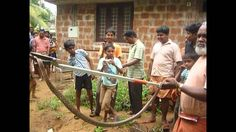SNAKE CATCHERS IN INDIA
