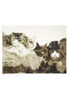 Meow-nt Rushmore Print   Mod Retro Vintage Wall Decor   ModCloth.com