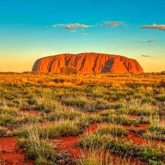 What a sight to behold while sipping champagne at sunset near Ayers Rock Uluru Australia