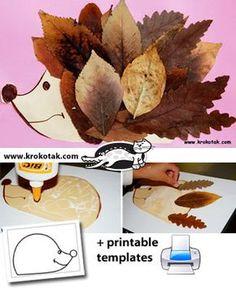 Riccio con le foglie.