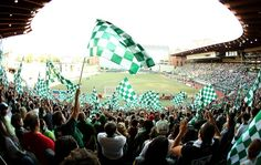 Great shot of Portland Timbers fans. #RCTID