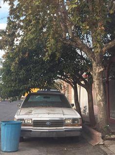 Denuncia ciudadano auto chatarra en la colonia Angel Trías lleva 6 años en el lugar; Acumula basura y ratas | El Puntero