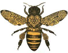 Tatooed bee