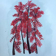 This is a watercolor painting of beautiful red trees that are changing colors here in Norway right now. Nature Paintings, Watercolor Paintings, Nature Drawing, Red Leaves, Red Tree, Autumn Art, Color Change, Amazing Art, Norway