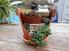 Fairy Garden in a Pot - 6