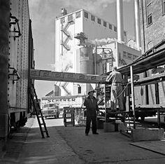 Schlitz Brewery, about Photographer unknown, via Adam Levin Milwaukee Skyline, Whitefish Bay, Breaker Box, Rail Car, Factories, Brewery, Wisconsin, Strong, Train