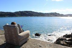 Wellington Long White Cloud, New Zealand South Island, Byron Bay, Tasmania, Denmark, Cities, Scenery, To Go, Heaven