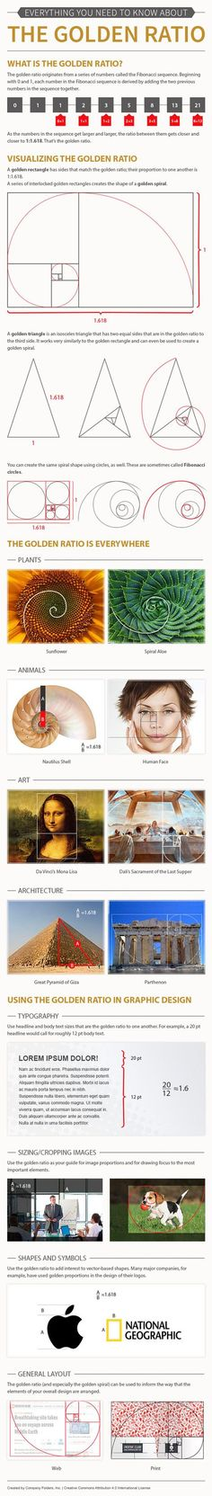 The golden ratio should not need any introduction to those who have studied math and design in school. Some designers apply these mathematical concepts to come up with more visually appealing works. This infographic from http://companyfolders.com covers a few golden ratio facts