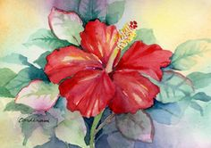 Susan Cardenas   WATERCOLOR