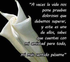 mi sentido pesame frases pictures to pin on Condolences Quotes, Condolence Messages, Gods Love Quotes, Christian Verses, Happy Friendship Day, Healing Words, Pin On, God Prayer, God Bless America