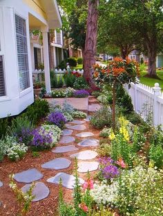 Idea for our front yard - plant small flowers in front of the bushes. Pretty Walk Way Garden  No grass to cut front yard.