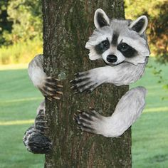 "RACOON TREE HUGGER  Product # RE597 $49.98 CAD - Cute polyresin critter is sure to be a great conversation piece in your yard, garden or basement. With recessed mounts on the back, its easy to mount on any 4""-6""Diam. tree, post or log with nails or screws (not included). Hand-painted polyresin.   Approx. 14"" H"