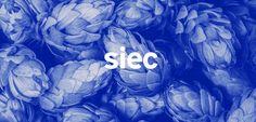 Siec_01.jpg