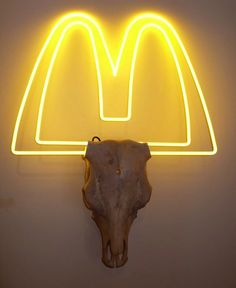 Taxidermy by Peter Gronquist via Flavorwire