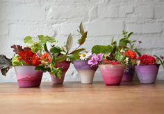 Dip dyed pots