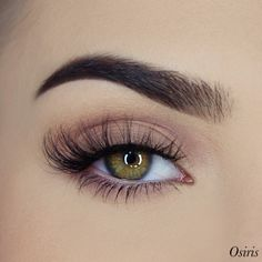 The product Osiris 3D Premium Lash (invisible band) is sold by certifeye in our Tictail store.  Tictail lets you create a beautiful online store for free - tictail.com