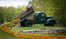 I like flowers. I like old and abandoned American trucks. Put it together and this is what you might imagine. It is really not surprising thing to see pots of flowers in old trucks. Even in cabins. What I really like about this one is idea of flowers being dumped directly from the truck. Like it was…