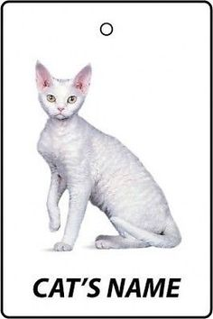 #Personalised #devon rex cat name car air #freshener,  View more on the LINK: http://www.zeppy.io/product/gb/2/120806203449/