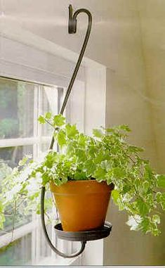 plant sconce ~ I need one of these for each section of my wrap around porch! source?