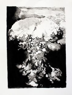 Penn-How Beautiful are these Days III 2011-Monotype- LR
