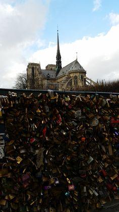 Cathédrale Notre-Dame de Paris et Pont de l'Archevêché - Paris