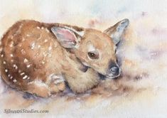 """""""Flora Fawn"""", watercolor baby deer painting by animal artist, Teresa Silvestri.  Original painting is available, in addition to prints & cards."""