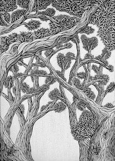 This illustration is in memory of an amazing artist, Harry Holcroft, who was a great inspiration to me and one of the reasons I became an artist. He believed in my work especially the more naturalistic ones. He will be sorely missed and never forgotten. Pen Art, My Drawings, Wildlife, Sketches, Amazing, Illustration, Artist, Prints, Inspiration
