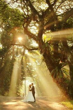 Take advantage of beautiful natural surroundings on your wedding day | Lightedpixels