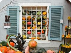 A fall window display.