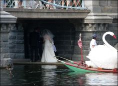 Bride at BPG Boston Public Garden, Fun Stuff, Bride, Fun Things, Wedding Bride, The Bride, Bridal