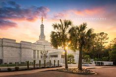 Columbia Temple Palmetto - A beautiful sunset and palmettos at the Columbia South Carolina Temple.