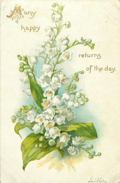 MANY HAPPY RETURNS OF THE DAY  lilies-of-the-valley