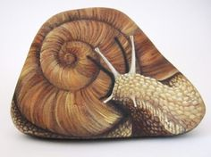 Roberto Rizzo snail 730x545 The art of Roberto Rizzo   rock painting and more