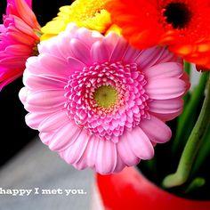 I'm so happy I met you - love
