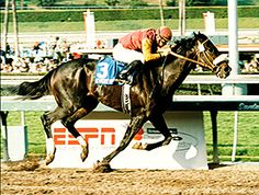 Event of the Year, who turned heads with his five-length victory in the 1998 Jim Beam Stakes (gr. II), died last year in Venezuela.    Mauricio Azar of Gran Derby, where Event of the Year had been standing in Venezuela, said the son of Seattle Slew died in January 2012 after a bout with colic. Event of the Year was 17.
