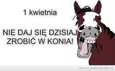 1 kwietnia Motto, Of My Life, Author, Funny, Historia, Text Posts, Laughing, Kids, Ha Ha