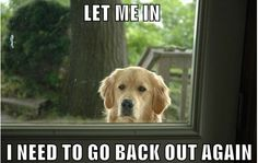 Let me in - I need to go out again