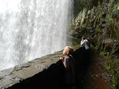 Located approximately 25 miles east of Salem, Oregon off Highway 22, Silver Falls State Park is the largest in Oregon. With each site tucked away under the canopy of the temperate rain forest, however, you'd never know it. Silver Falls is easy to get to off I-