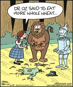 Wizard of Oz Funny Cartoons, Funny Comics, Funny Memes, Daily Cartoons, Wizard Of Oz Memes, Broadway, Science Humor, The Wiz, Funny People