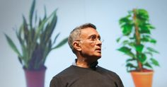 TED Talk Subtitles and Transcript: Researcher Kamal Meattle shows how an arrangement of three common houseplants, used in specific spots in a home or office building, can result in measurably cleaner indoor air.