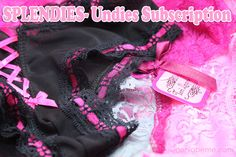 Splendies- Undies Subscription | Geniabeme Beauty Blog