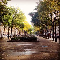 Paris: Richard lenoir