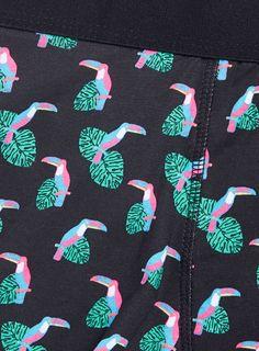 Photo 2 of Toucan Motif Underwear Single