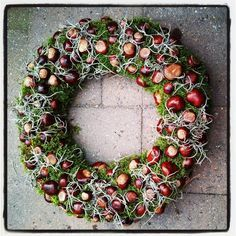 great DIY ideas for beautiful wreaths in the . - 14 great DIY ideas for beautiful wreaths in the … the wreaths great DIY ideas for beautiful wreaths in the . - 14 great DIY ideas for beautiful wreaths in the … the wreaths - Handmade Christmas Decorations, Thanksgiving Decorations, Seasonal Decor, Autumn Wreaths, Holiday Wreaths, Autumn Crafts, Summer Diy, Fall Flowers, Autumn Home